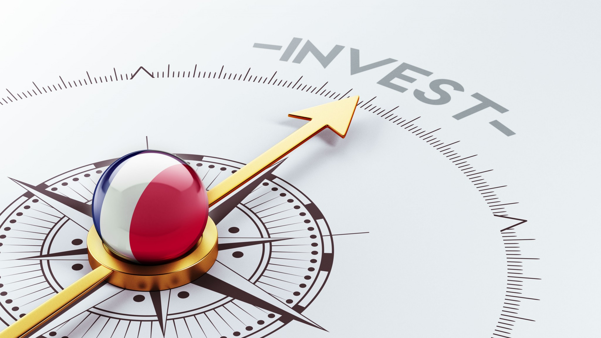 Forms of direct investment in Vietnam