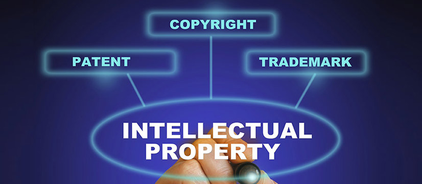 The Vietnam Intellectual Property Law 2005