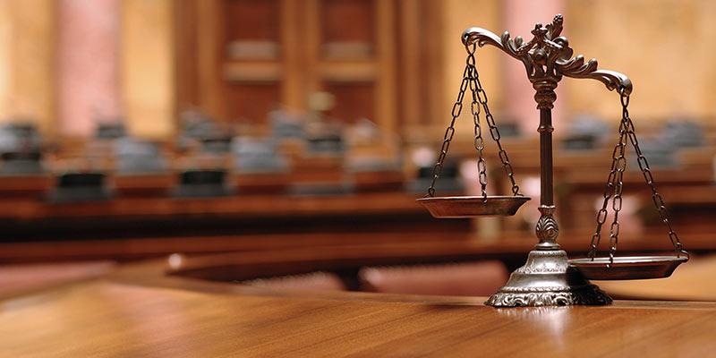Vietnam trademark watch service inquiry